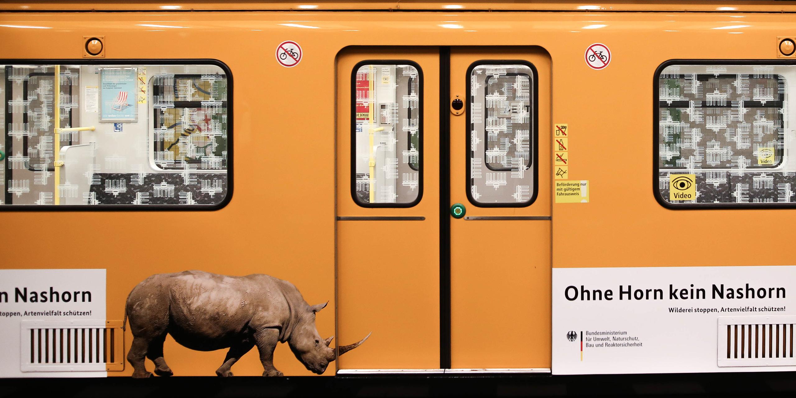 Türöffner für den Artenschutz: Ein Nashorn fährt U-Bahn